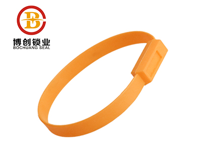 BC-P602 plastic seal plastic strip fixed length security seal