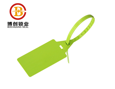 P107 Adjustable Pull-Up plastic seal for container shipping
