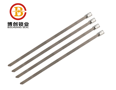 Customized Iron Steel-Wire Strap Security Metal cable Tie BC-S105