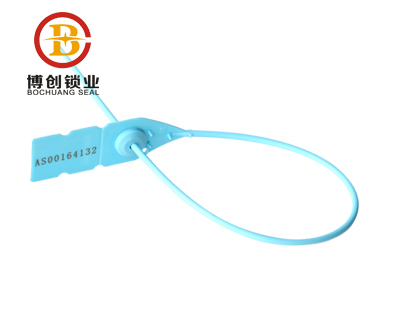 Colorful self locking plastic seal with special design